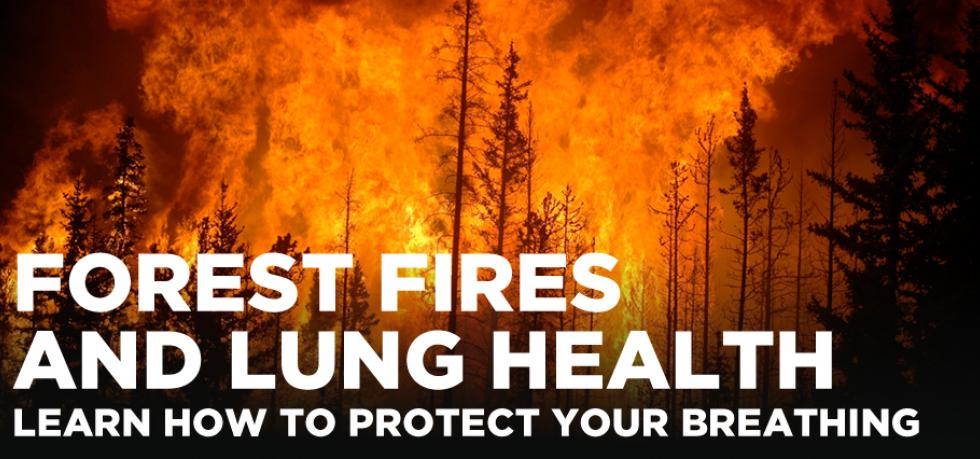 Healthy lung health tools during wildfire season